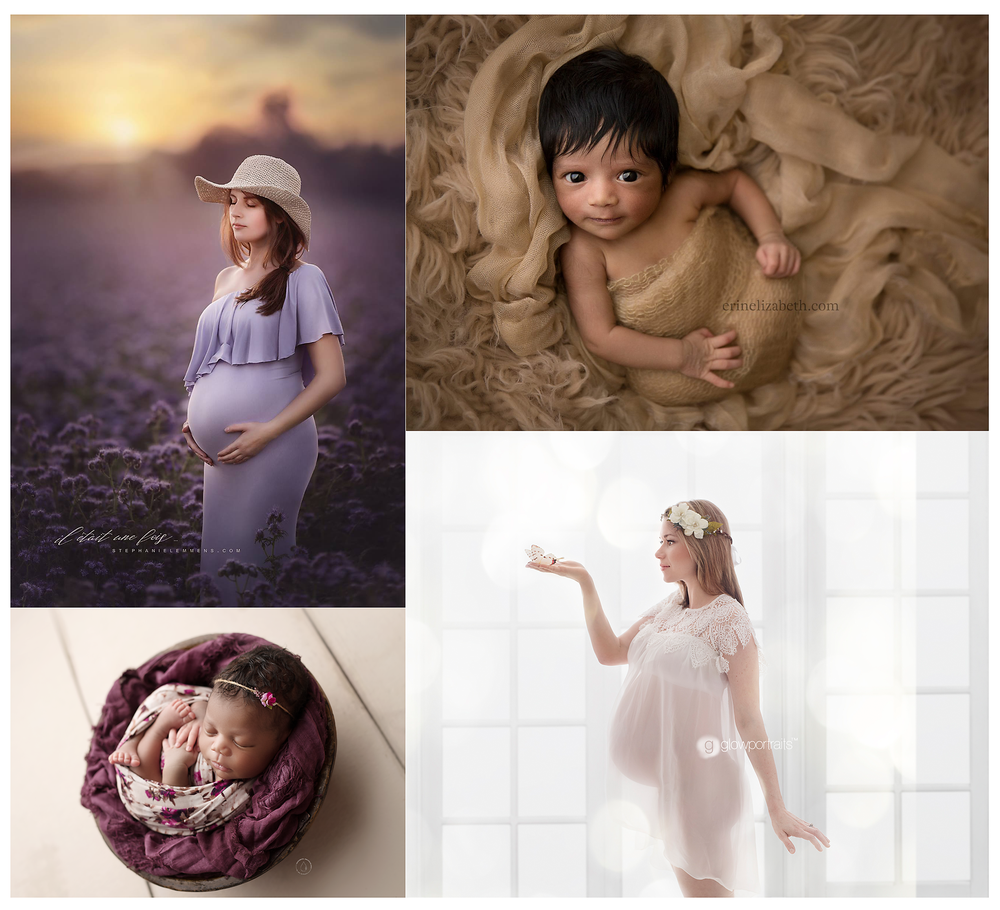 The ultimate newborn and maternity workshop